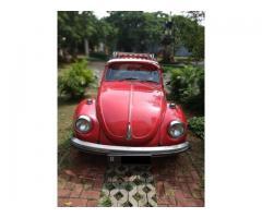 For sale. Vw Kodok 1302